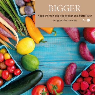 Bigger-Veg-PNG